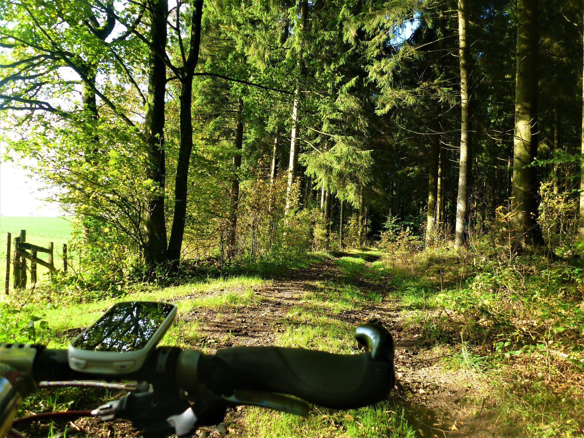 VTT dans la région de Faymonville / Parcours VTT 3 de Bütgenbach